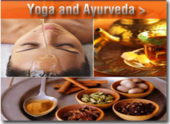 yoga and Ayurveda relation