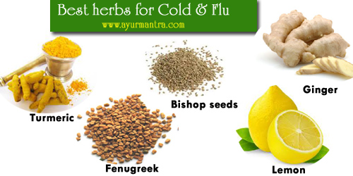 Anti-Cold herbs