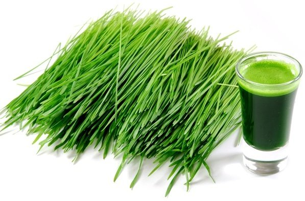 Benefits of barley grass juice